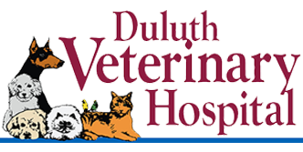 Duluth Veterinary Hospital