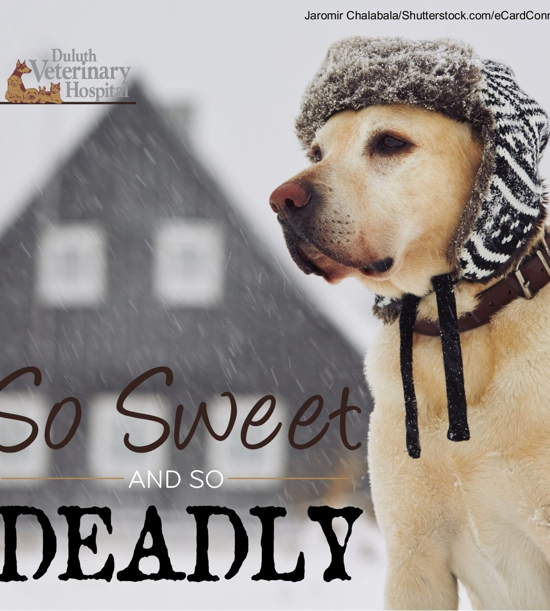 So Sweet and So Deadly